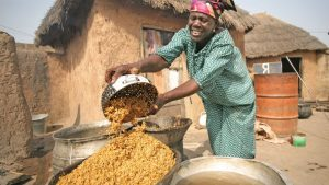 More public investment needed to support women in agric – study