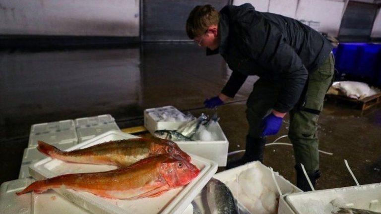 Post-Brexit trade: Boris Johnson calls for eat British fish campaign