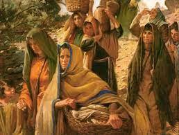 Apostle to the Apostles: The Women Disciples of Jesus