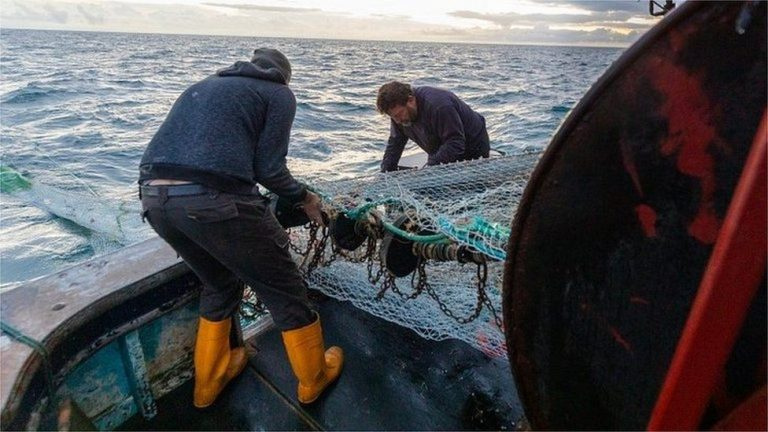 UK and Norway fail to reach fishing deal